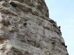Гълъбите на кулата на Константин I